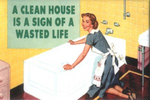 clean20house20wasted20life